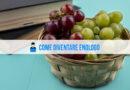 Come diventare enologo: laurea in enologia, specializzazione e sbocchi